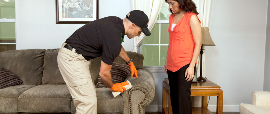 Tinley Park, IL carpet upholstery cleaning