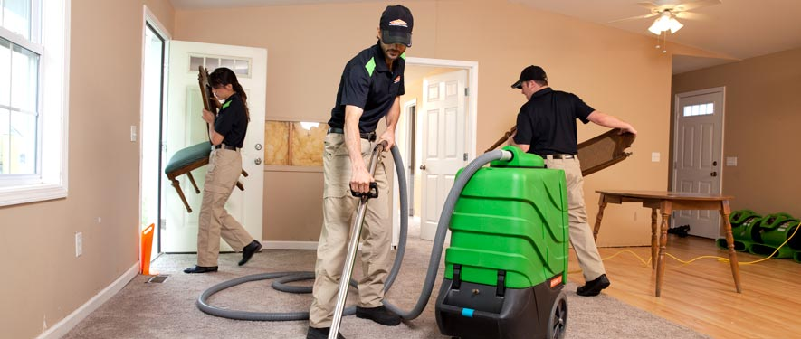 Tinley Park, IL cleaning services